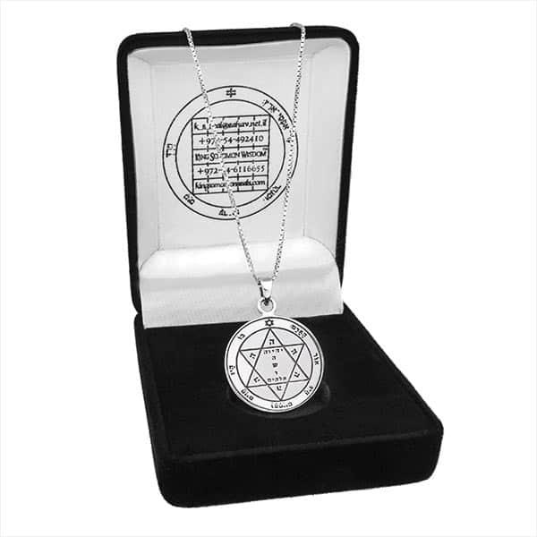 Health-silver-Seal-+-chain-(925)