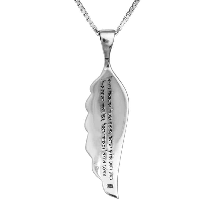 ANGLE-WING-LARGE+CHAIN-(925)